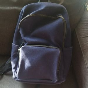 Everlane cloth blue backpack with leather accent